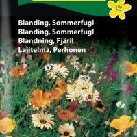 Blanding Sommerfugl
