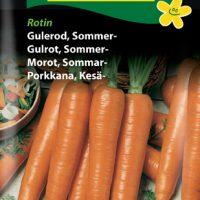 Sommergulerod Rotin MaxiPack