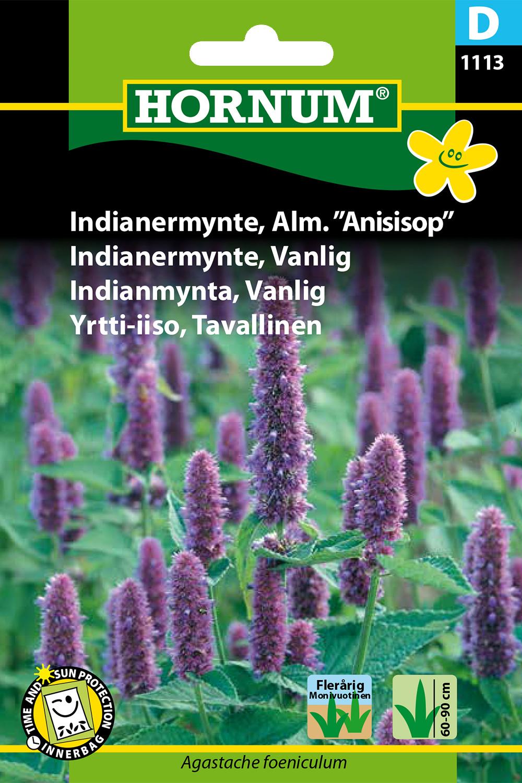 anisisop
