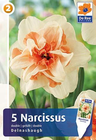 narcis delnashaugh