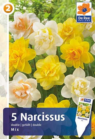 narcis double mix